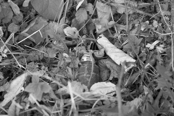 Death in a small package - a cluster bomb