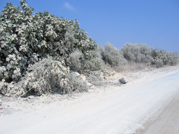 Snow in Lebanon?  No, just dust from the bombs.